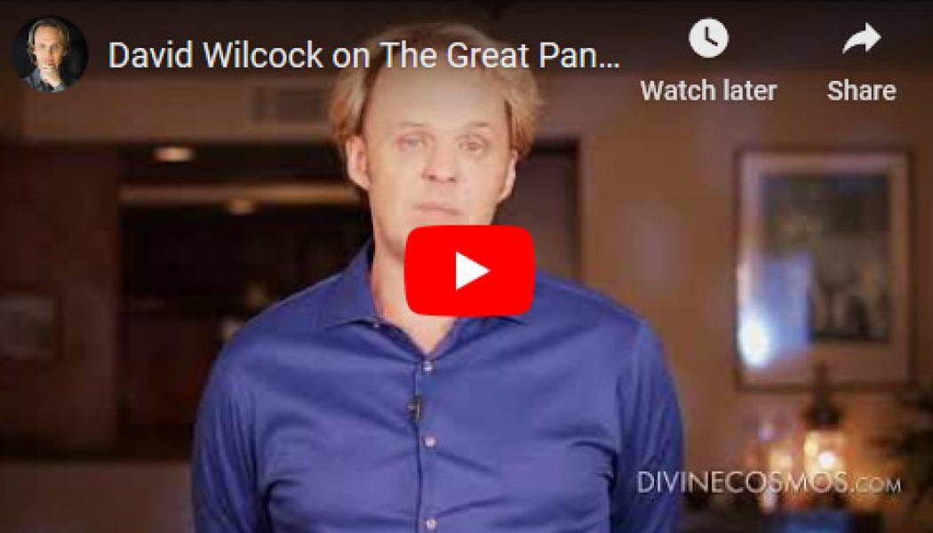 David Wilcock sobre la Gran Pandemia III