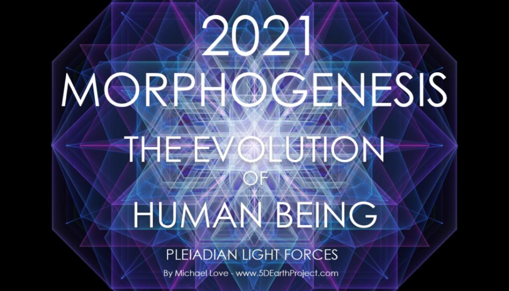 MORFOGÉNESIS 2021